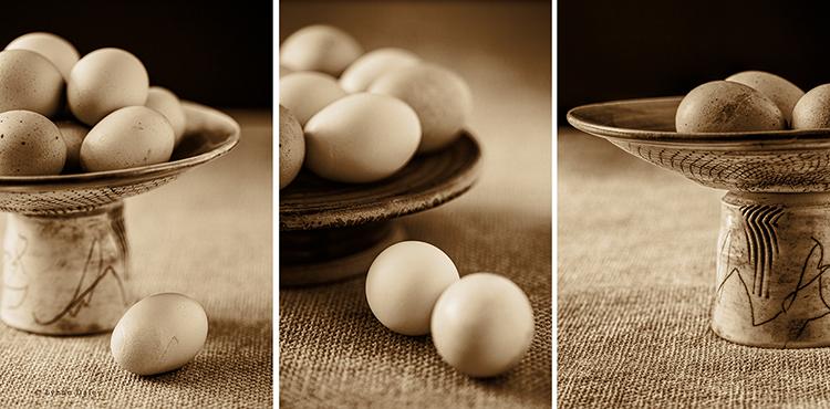 EggsTriptych by Lynne
